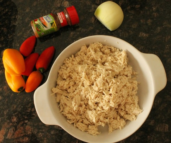 MexicanShredded Chicken 3