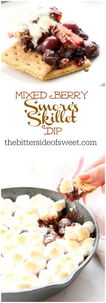 Mixed Berry Smores Skillet Dip | The Bitter Side of Sweet