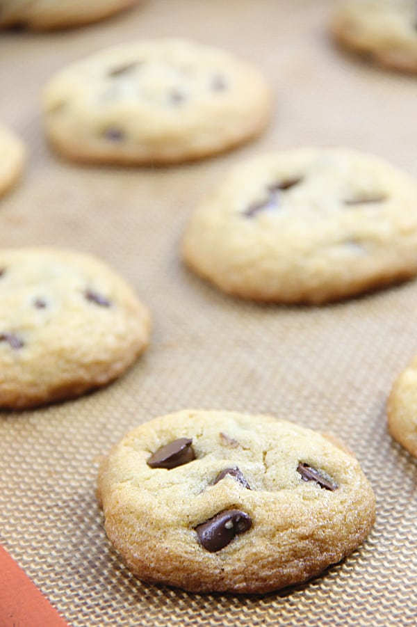 Classic Chocolate Chip Cookies on sheet pan