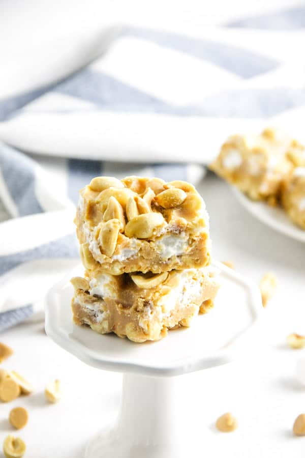 Salted Nut Roll Bars on white stand